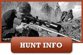 Southern Oregon Blacktails Hunt Information